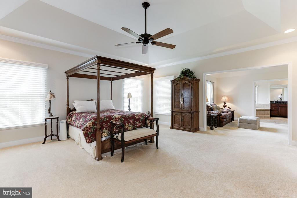 Master Bedroom - 15180 BANKFIELD DR, WATERFORD