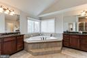 Master Bath - 15180 BANKFIELD DR, WATERFORD