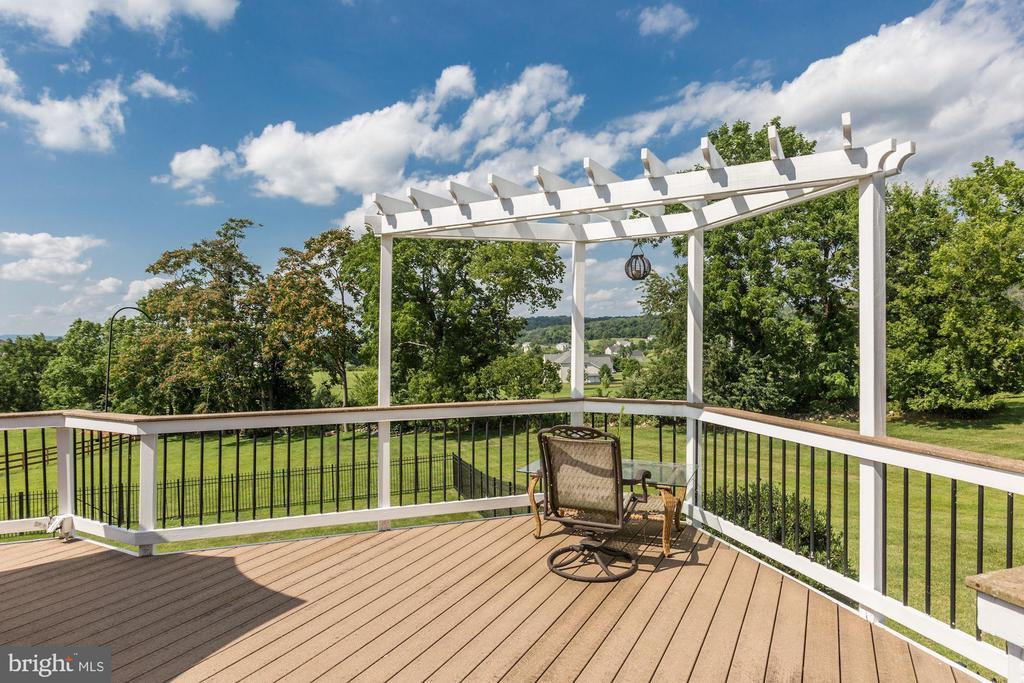 Gorgeous Views! - 15180 BANKFIELD DR, WATERFORD
