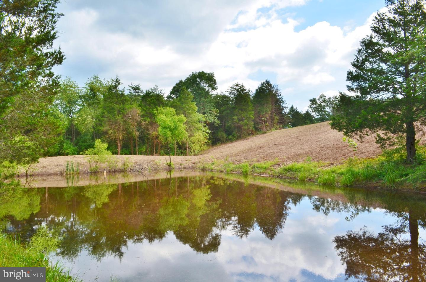 Land for Sale at Fort Valley, Virginia 22652 United States
