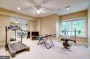 Lower level exercise room - 11552 MANORSTONE LN, COLUMBIA
