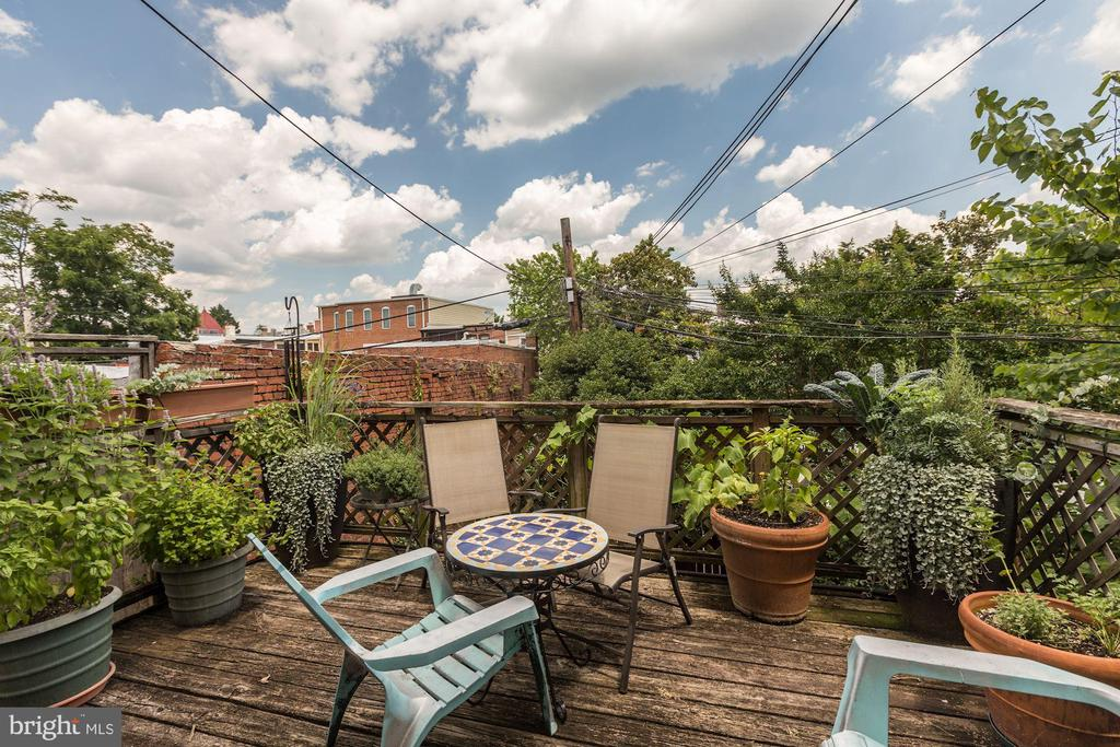 Unit #3 Private deck - 131 11TH ST NE, WASHINGTON