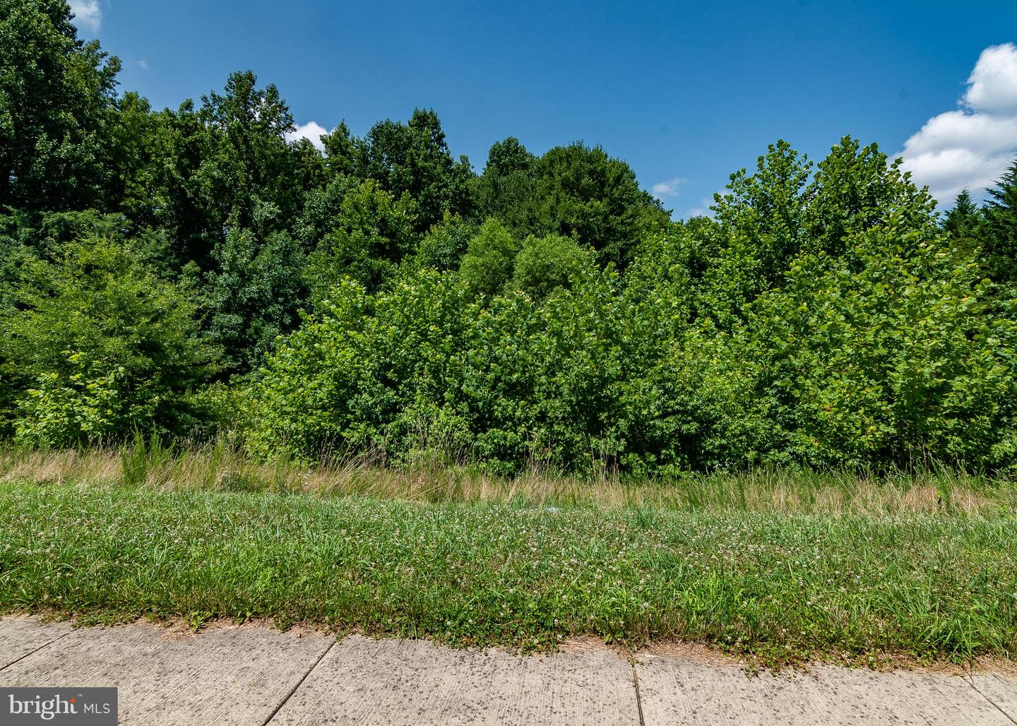 Land for Sale at 12211 Smoot Way Brandywine, Maryland 20613 United States