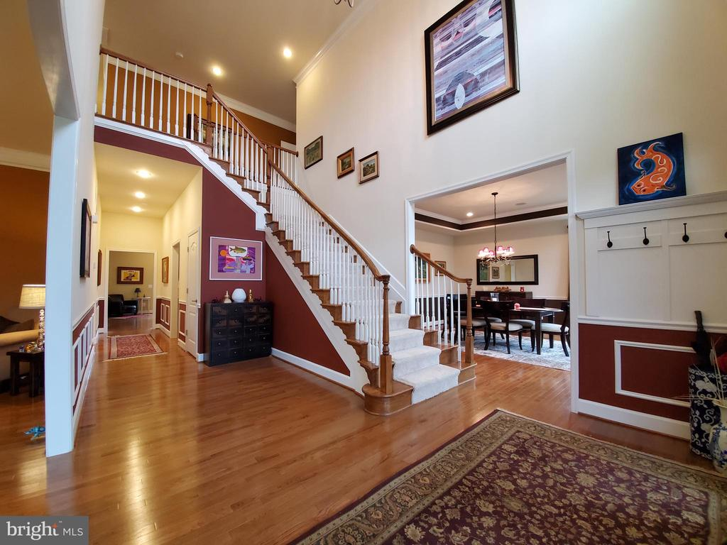 Light, dimensions and colors are like eye candy. - 41882 SCOTCHBRIDGE PL, ASHBURN