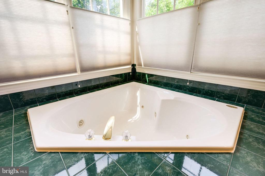 Master Bath Jet Tub - 12100 WALNUT BRANCH RD, RESTON