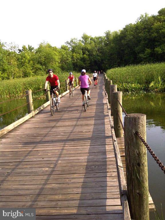 Mt. Vernon Bike Trail - 4201 KIMBRELEE CT, ALEXANDRIA