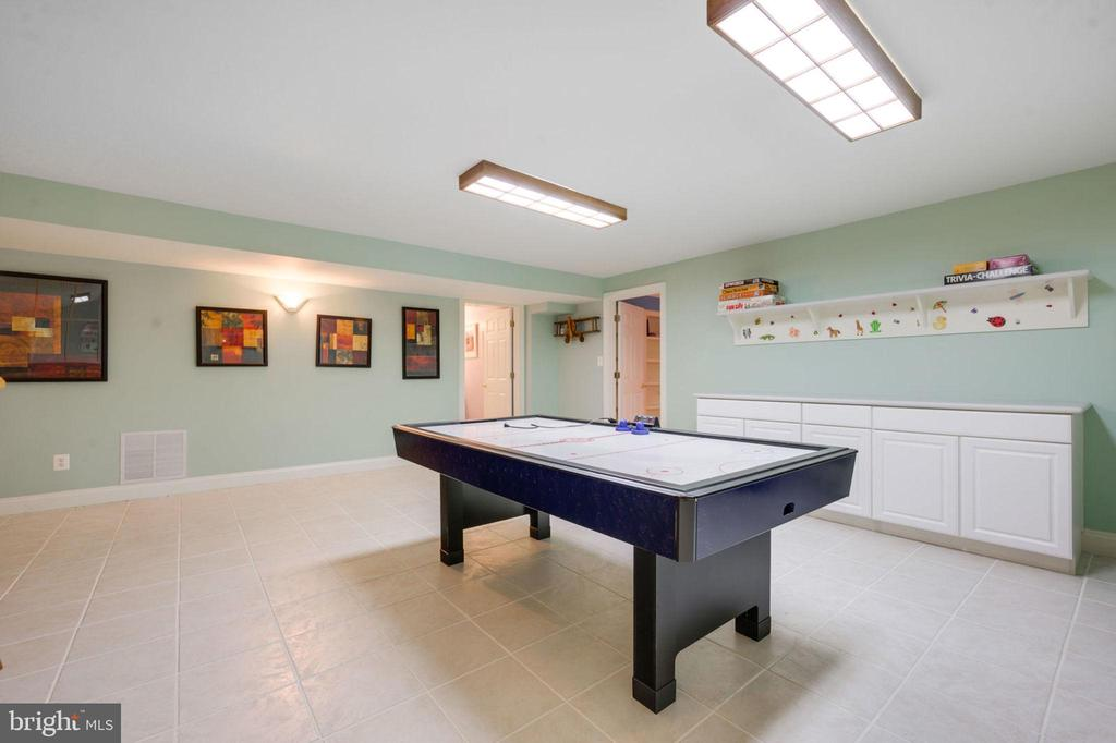 Recreation Room - 12100 WALNUT BRANCH RD, RESTON