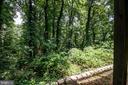 National Parkland behind house - 329 BRAEHEAD DR, FREDERICKSBURG