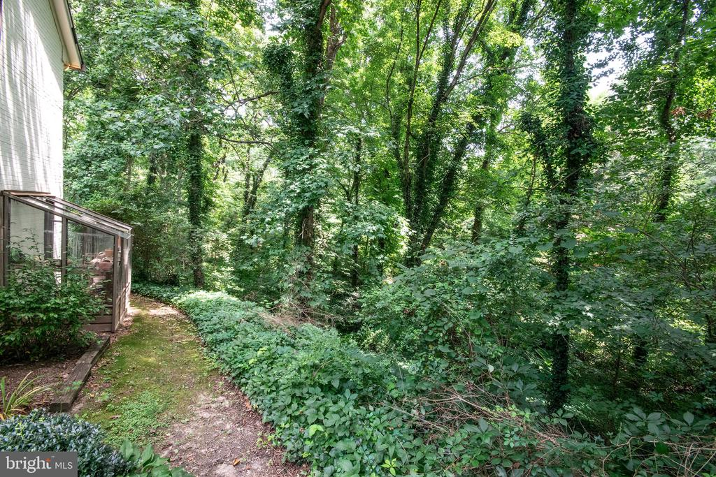 Wooded and private - 329 BRAEHEAD DR, FREDERICKSBURG