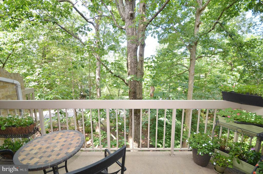 Balcony Off the Living Room - 11214 BEAVER TRAIL CT #12, RESTON