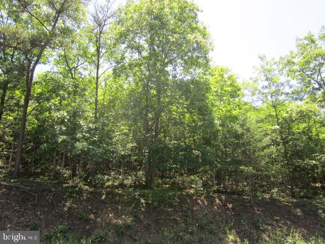 Additional photo for property listing at  Augusta, West Virginia 26704 Vereinigte Staaten