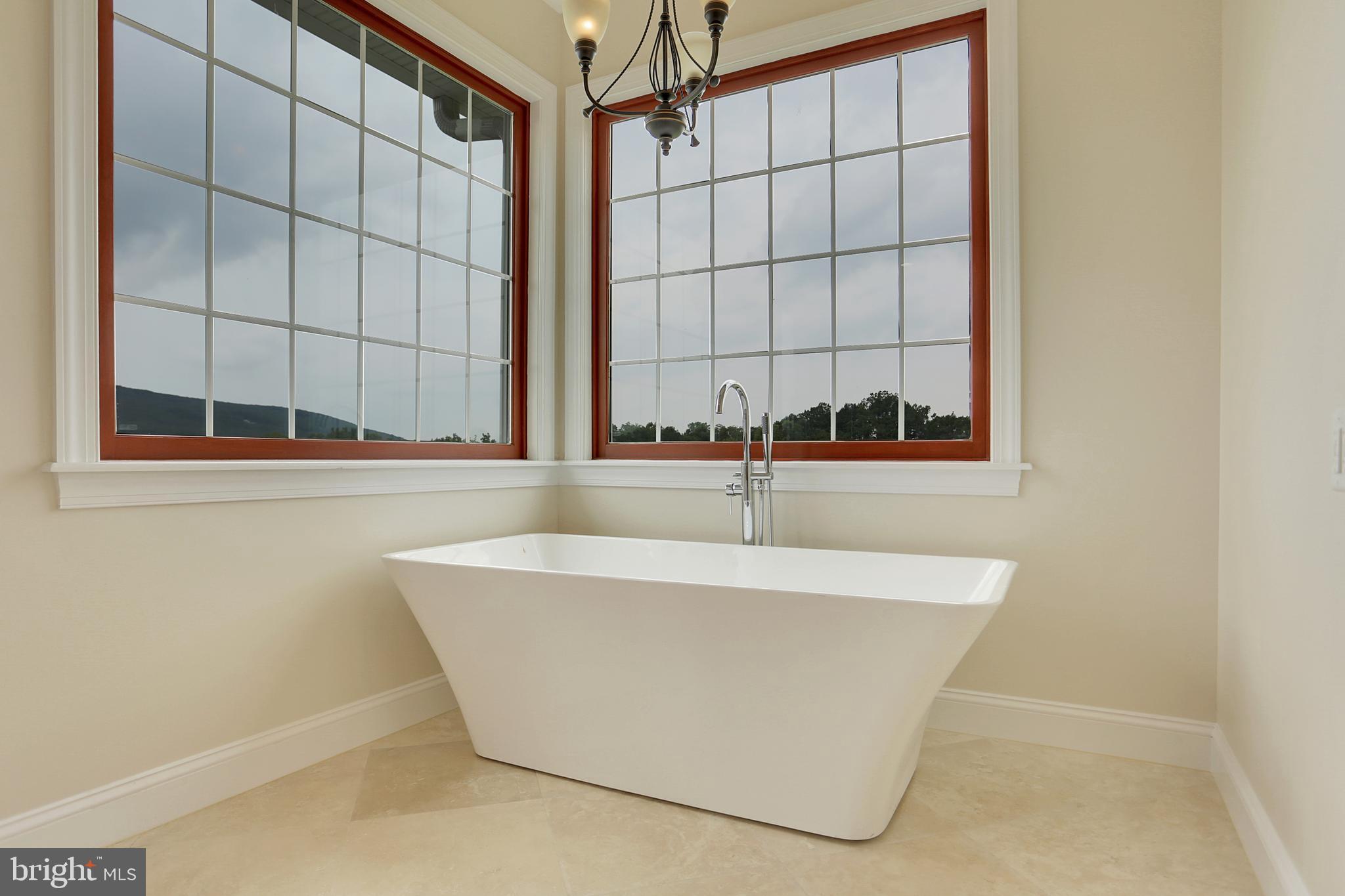 Master Bath Soaking Tub