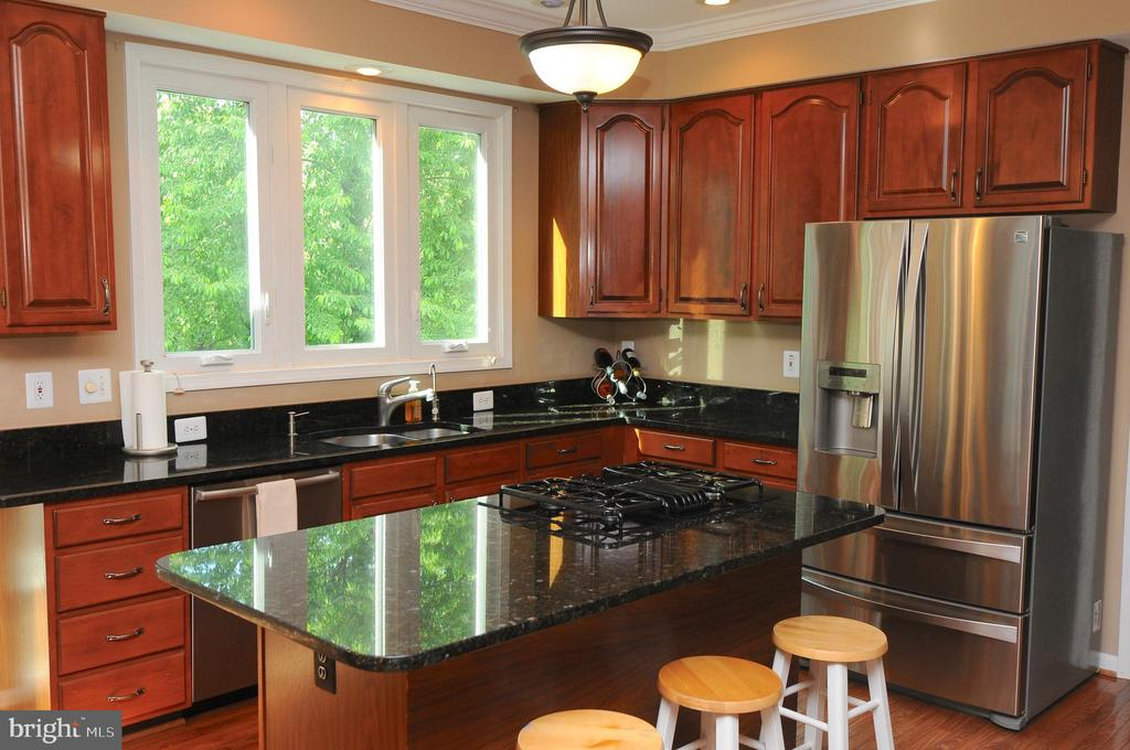GRANITE AND STAINLESS STEEL APPLIANCES - 46432 MONTGOMERY PL, STERLING