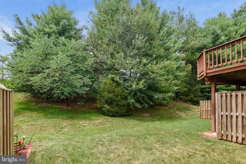 Tons of privacy with a buffer of trees! - 20529 ASHLEY TER, STERLING