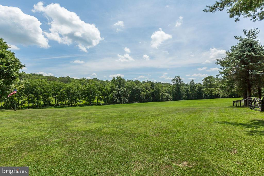 Pastoral views, open fields for animals - 23009 COBB HOUSE RD, MIDDLEBURG