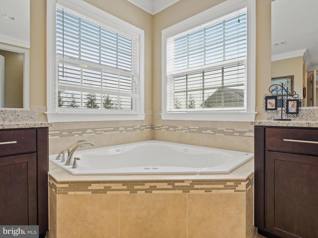 Master Bath Garden Tub - 3988 ORANGE ST, TRIANGLE