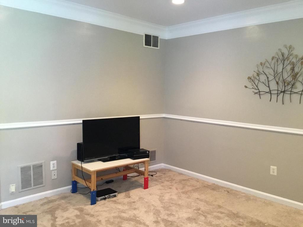 Lower Level Family Room 2 - 144 MARTIN LN, ALEXANDRIA
