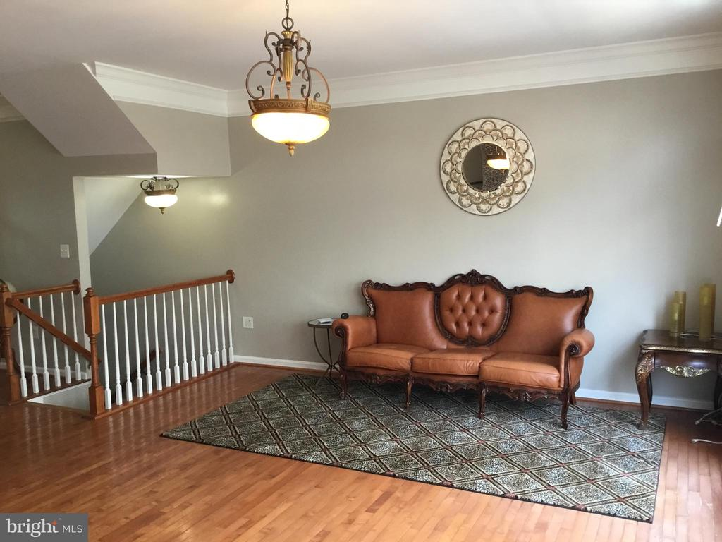 Main Level Living Room - 144 MARTIN LN, ALEXANDRIA