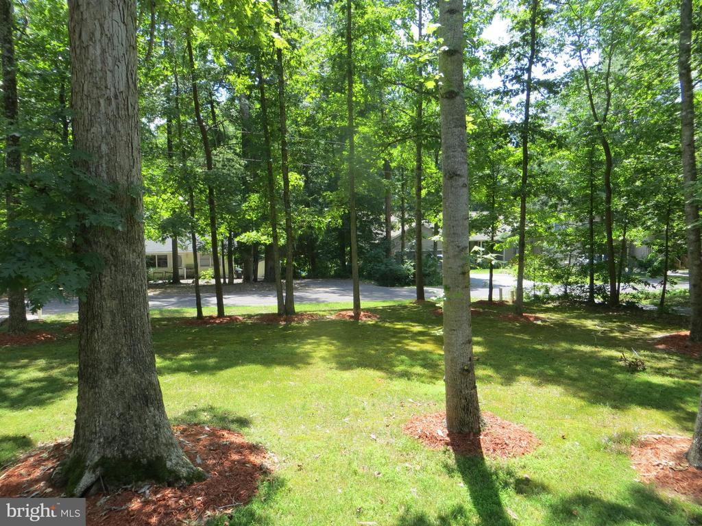 View over front yard - 117 MONROE ST, LOCUST GROVE