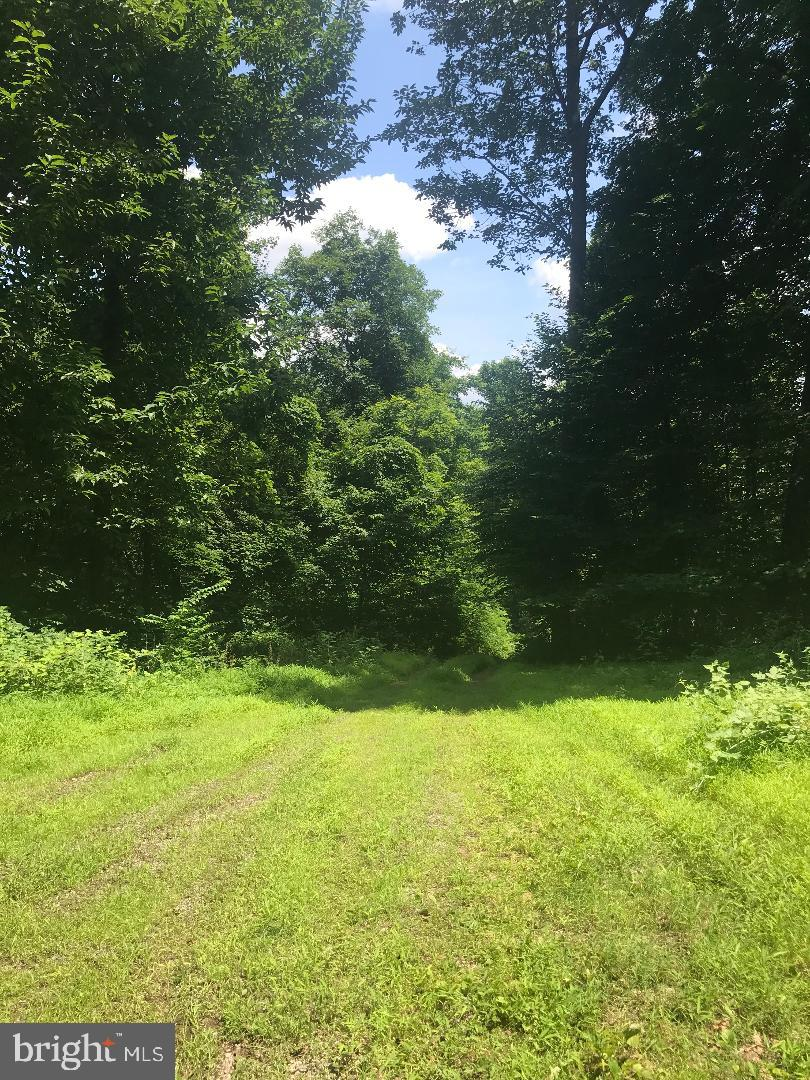 Land for Sale at Fannettsburg, Pennsylvania 17221 United States