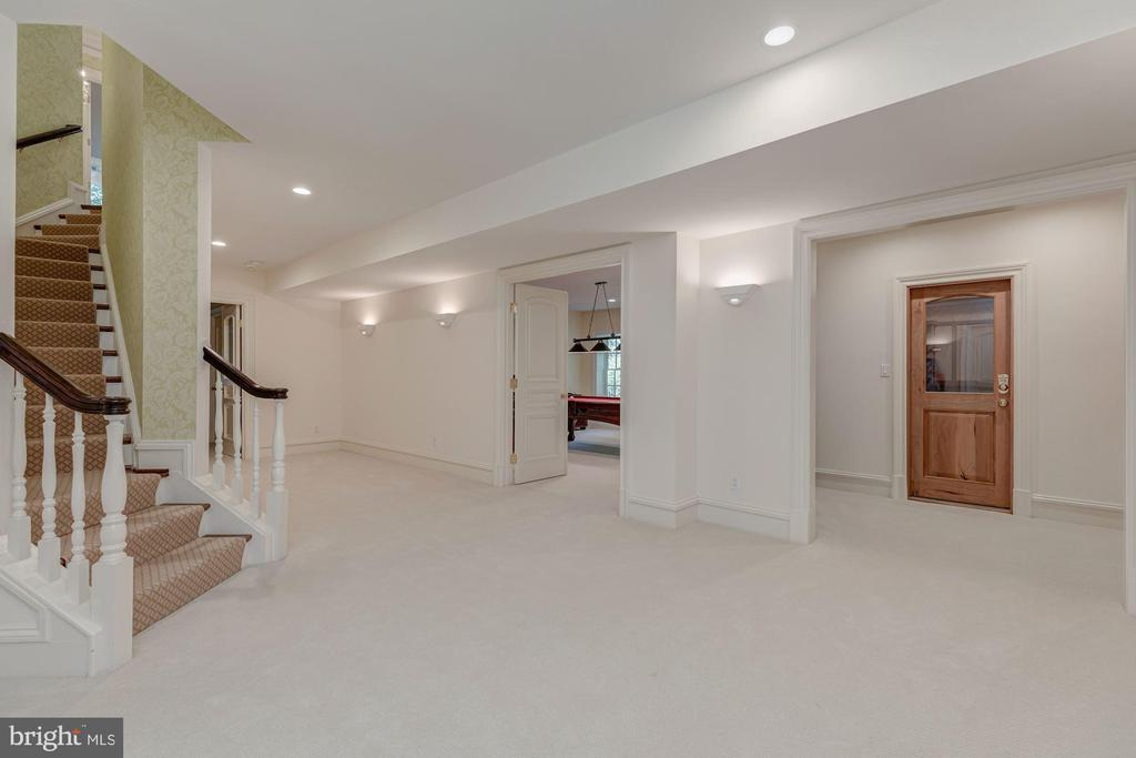 Lower Level - 916 MACKALL AVE, MCLEAN