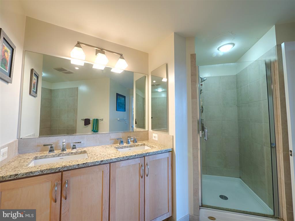 Master Bath - 888 N QUINCY ST #1002, ARLINGTON