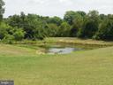 Pond - 1105 REDBUD RD, WINCHESTER