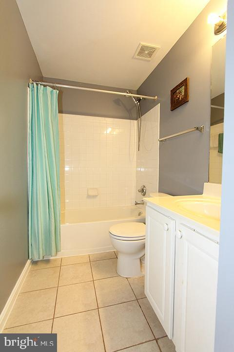 Lower level full bathroom - 252 GOLDEN LARCH TER NE, LEESBURG