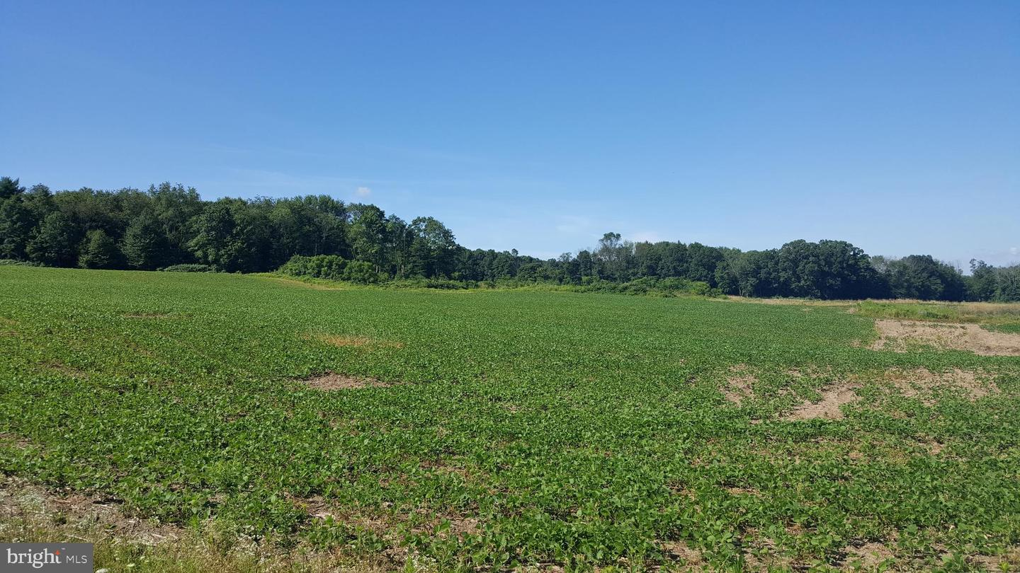 Land for Sale at New Ringgold, Pennsylvania 17960 United States