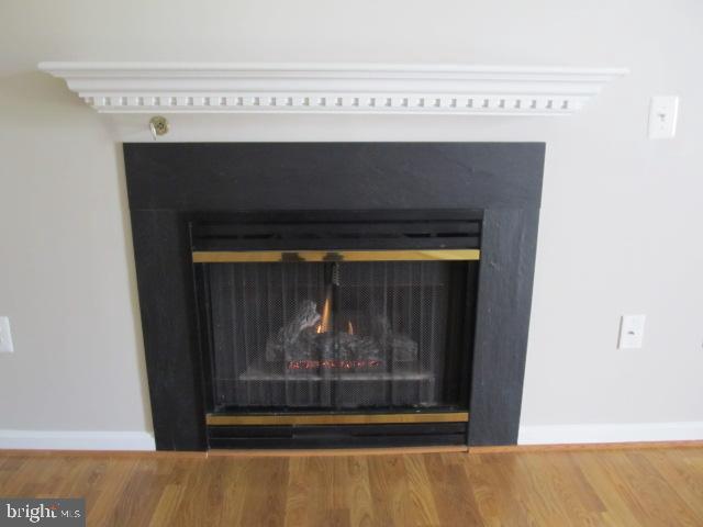 Fireplace - 20585 SNOWSHOE SQ #102, ASHBURN