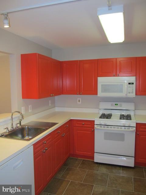 Kitchen - 20585 SNOWSHOE SQ #102, ASHBURN