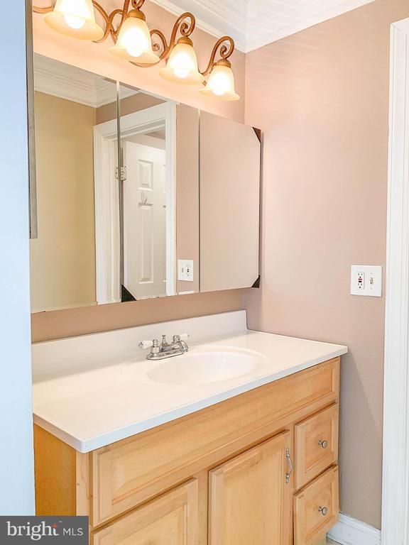 Master Bathroom 1 - 107 BAKER LN, STERLING