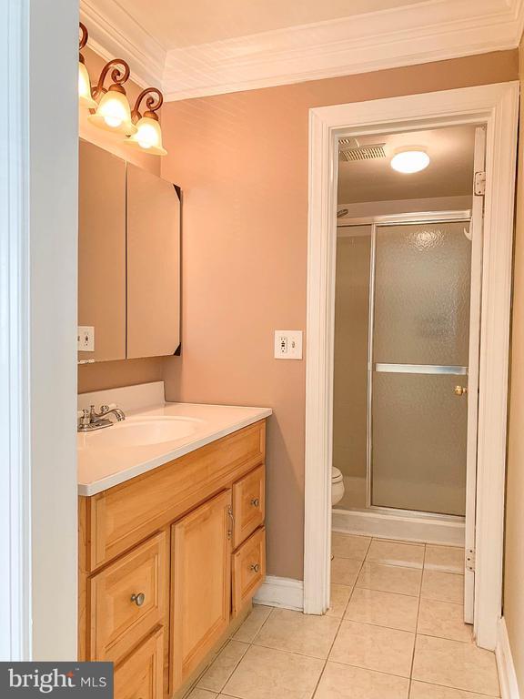 Master Bathroom 1 on Main Level - 107 BAKER LN, STERLING