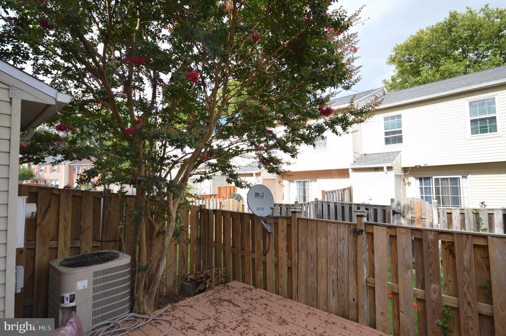 Fenced in back yard. - 22326 MAYFIELD SQ, STERLING