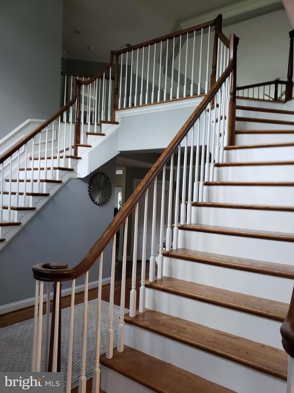 Grand Stairway - GLENDALE CT, FREDERICKSBURG