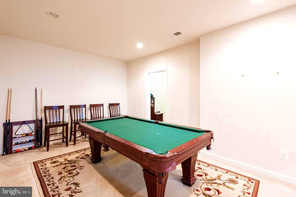 Basement - 25091 RIDING CENTER DR, CHANTILLY