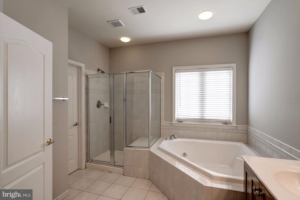 Glass Shower and Private Water Closet - 22022 SUNSTONE CT, BROADLANDS