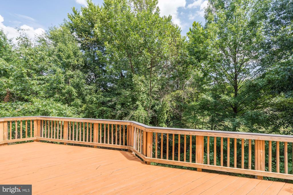 Large Deck Backing to Tree Save Area - 22022 SUNSTONE CT, BROADLANDS