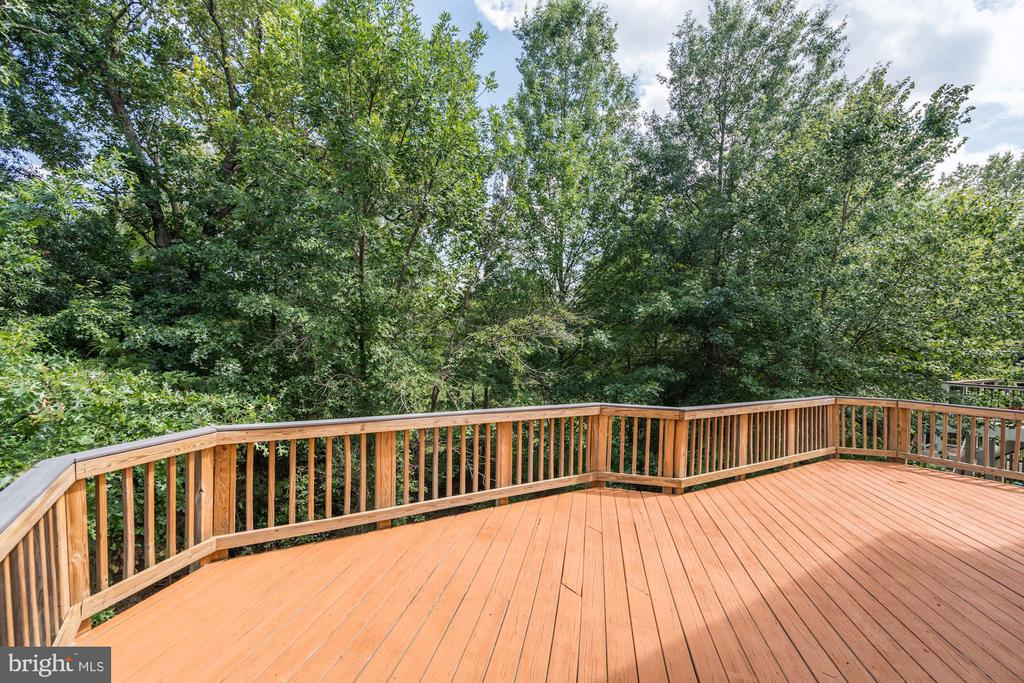 Private Deck Backing to Trees - 22022 SUNSTONE CT, BROADLANDS