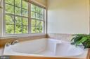 Master bath soaking tub - 21935 WINDY OAKS SQ, BROADLANDS