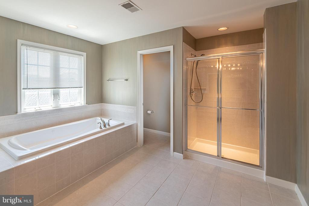 Dual sinks, soaking tub, and walk-in shower - 23068 PECOS LN, BRAMBLETON