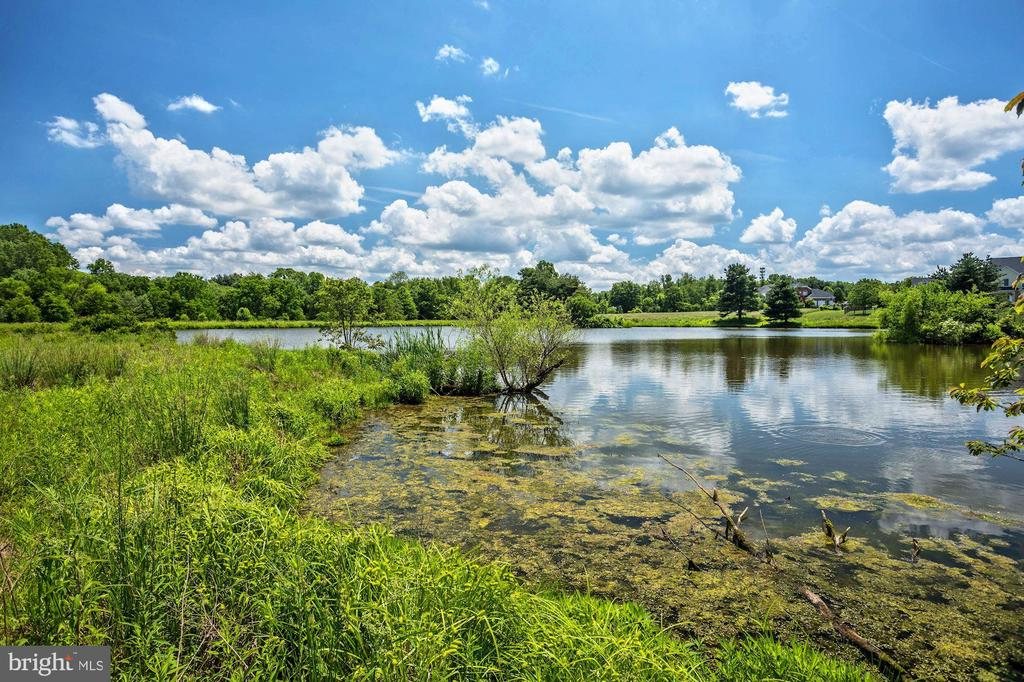 Large Pond - 13032 HIGHLAND RD, HIGHLAND