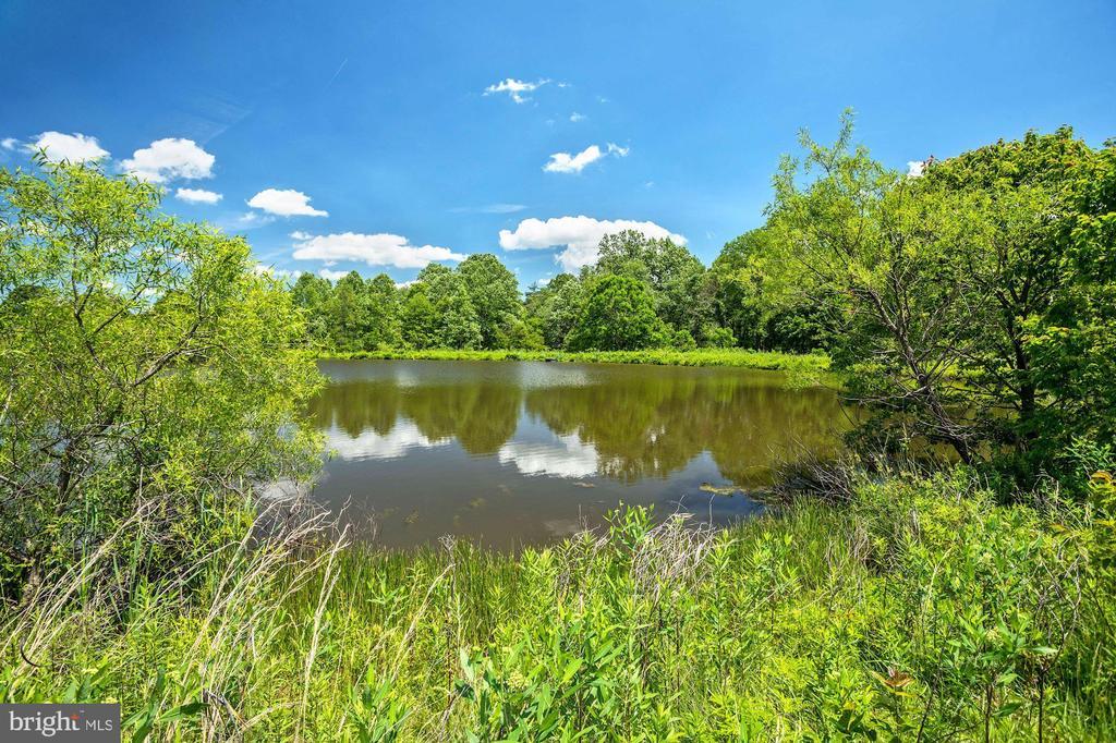 Pond - 13032 HIGHLAND RD, HIGHLAND