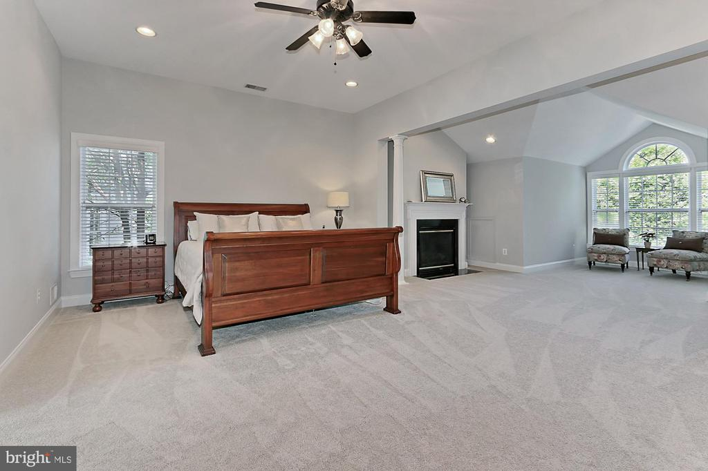 Master suite with gas fireplace & sitting room - 43937 RIVERPOINT DR, LEESBURG