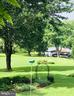 View from the porch - 3600 MORNING GLORY RD, BUMPASS