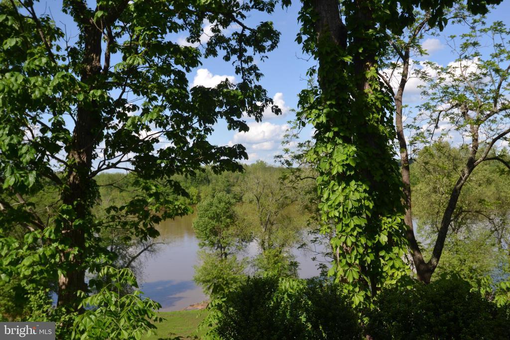 Rear Views - 18318 FAIRWAY OAKS SQ, LEESBURG
