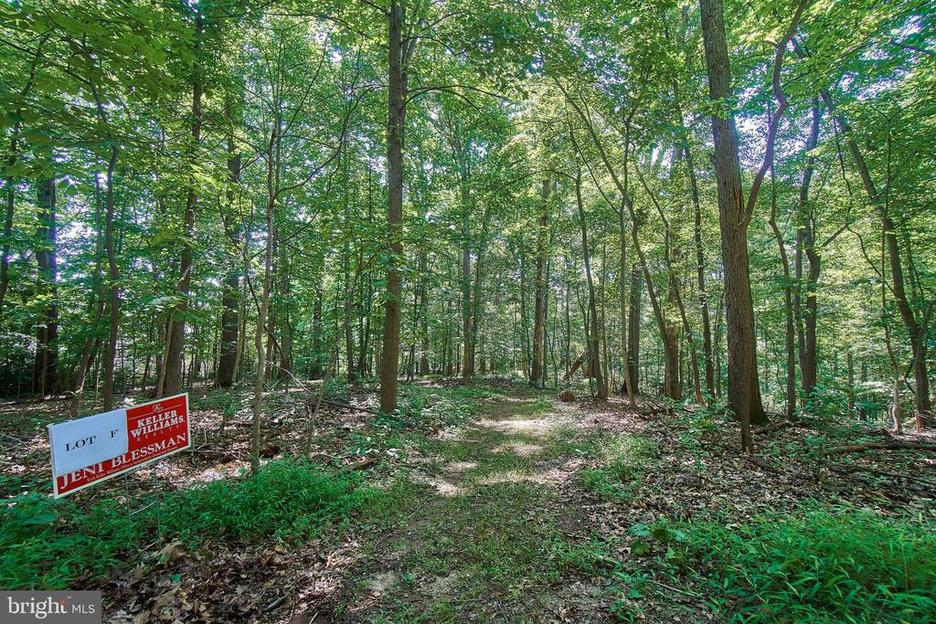 Lot F   1.82 acre - 10231 LEESBURG PIKE, VIENNA