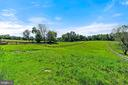 Beautiful Green Pastures - 15012 CLOVER HILL RD, WATERFORD