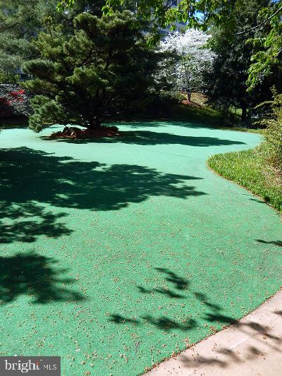 You even have a putting green! - 8370 GREENSBORO DR #118, MCLEAN