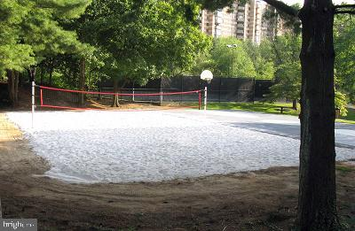 Beach volleyball anyone? - 8370 GREENSBORO DR #118, MCLEAN